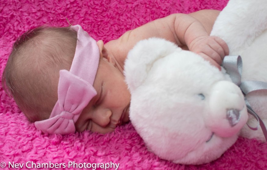 family, photoshoot, Hunmanby, North Yorkshire, fun, giggles, Castleford, proud parent, natural, love, newborn, first born, baby with teddy, hugd, pink, special time, magic, Nev Chambers