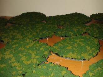 model woods for AoF (1)