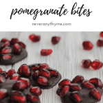 dark chocolate and pomegranate dessert