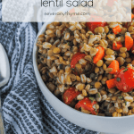 garden lentil salad in a bowl