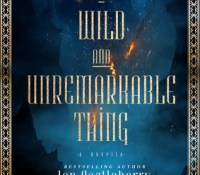 Book Trailer Reveal: A Wild and Unremarkable Thing by Jen Castleberry
