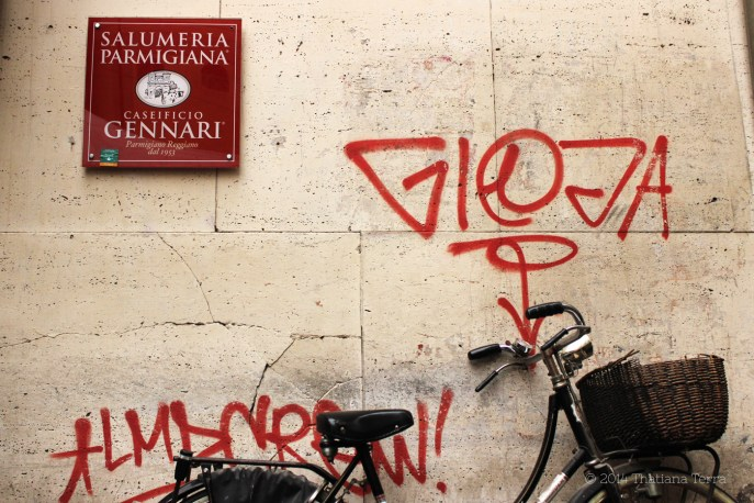 Streets of Parma 10