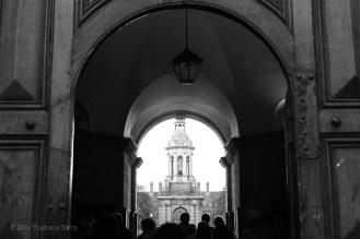 Trinity College - St. Patrick's Holiday 2014