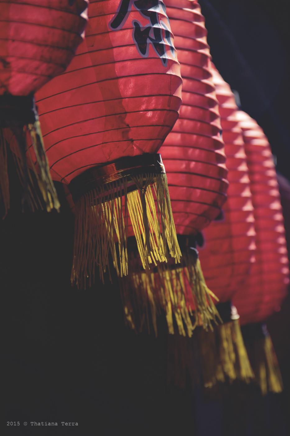 China: Qibao watertown in details (7)