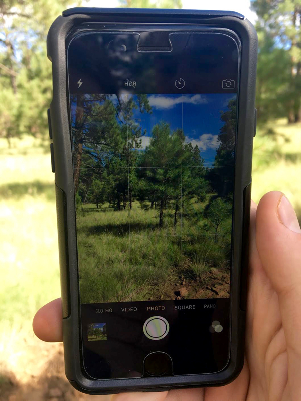 phone-camera-photography-tips-from-neverendingjourneys-com