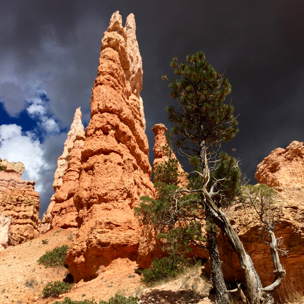 Bryce Canyon Stormy Weather from NeverEndingJourneys.com