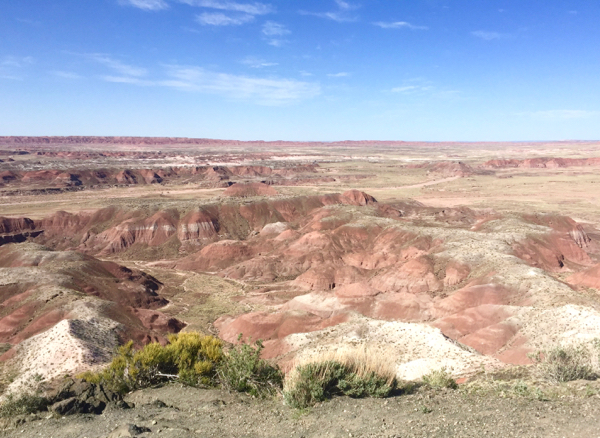 Petrified Forest Travel Guide Painted Desert