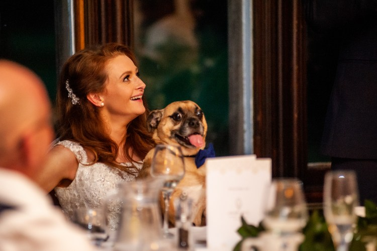 bride with dog smiling