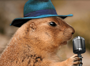 Groundhog with a podcast