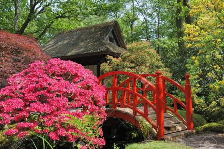 4855050-japanese-garden-with-flowers-and-red-bridge-stock-photo-landscape