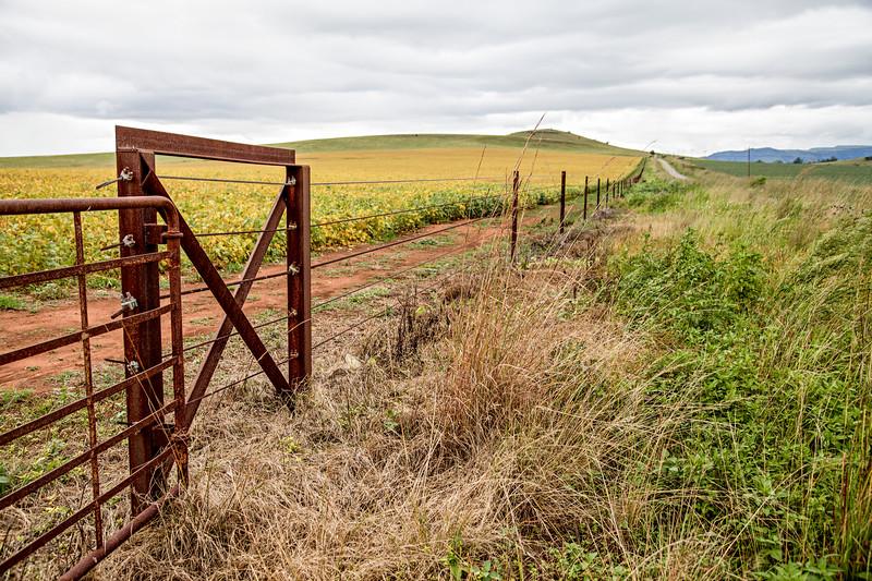 Backlands gate