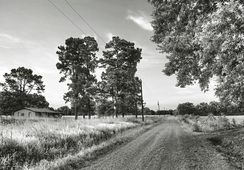 Zydeco road