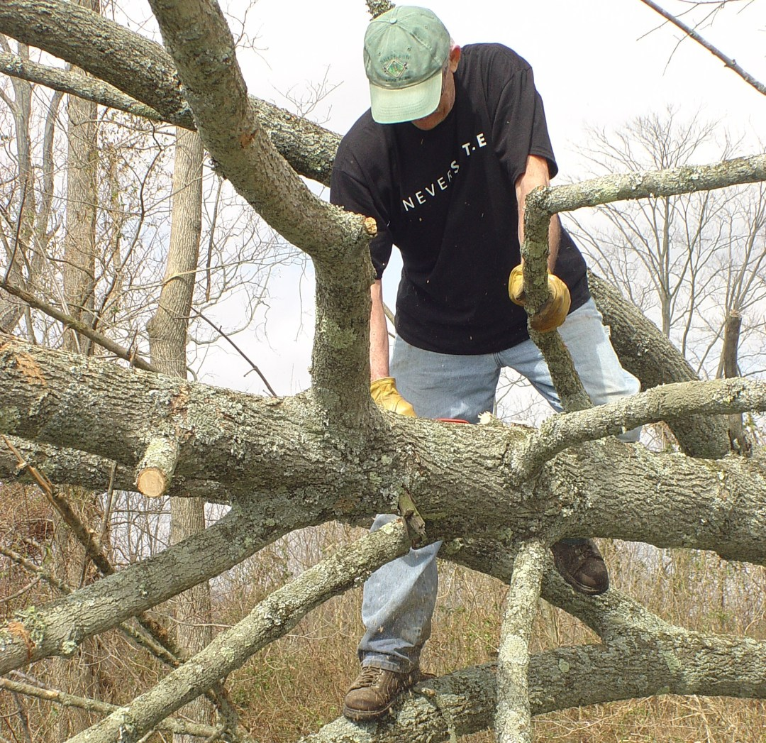 Ted Short climbs on a tree to clear downed branches after a tornado in Henryville.