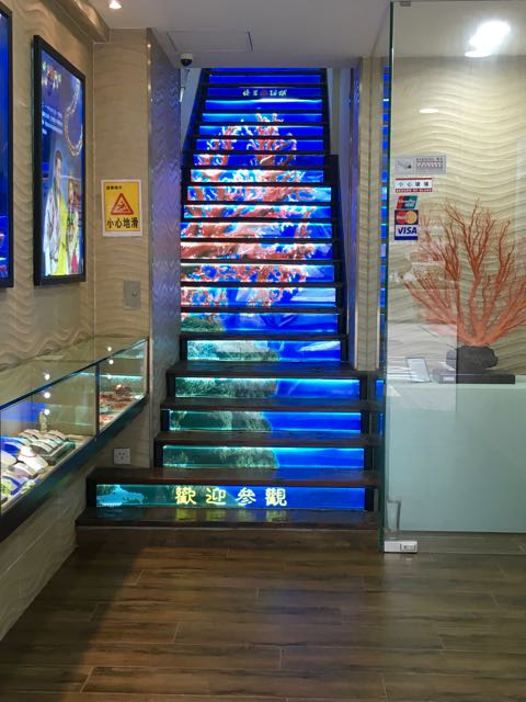 Kowloon Day 1 | Beautiful Coral stair leading up to restaurant | Never to old to travel | Gary House
