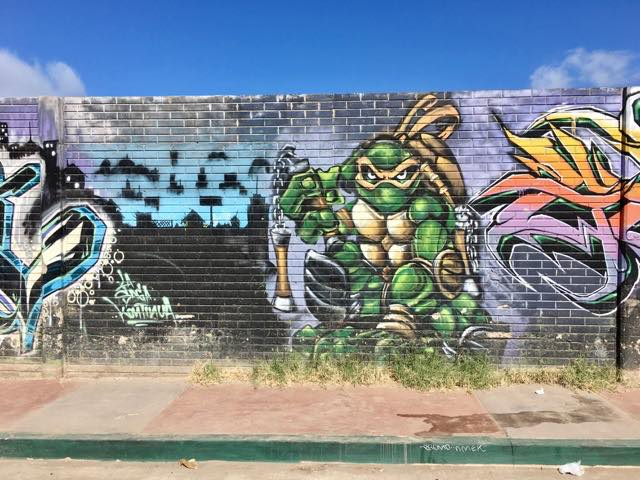 tmnt-graffiti-mural-5 | Never to Old to Travel | Gary House