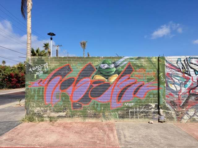tmnt-graffiti-mural-8 | Never to Old to Travel | Gary House
