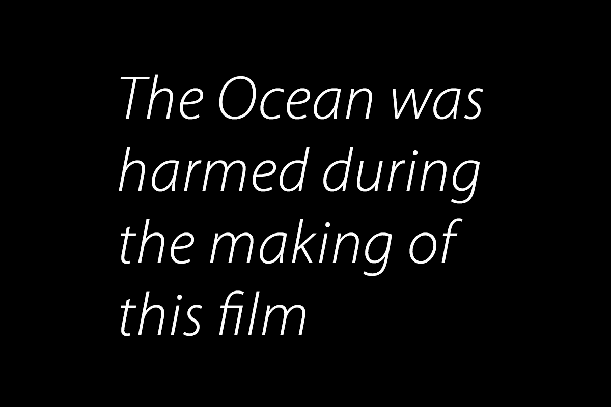 The Ocean was harmed during the making of this film