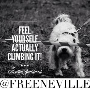 neville_goddard_quote_the_ladder_lesson