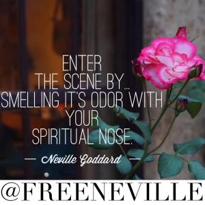 how_to_feel_it_real_neville_goddard_smell_nose