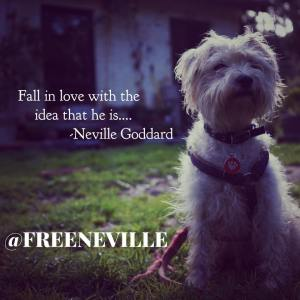 how_to_feel_it_real_imagine_for_others_neville_goddard