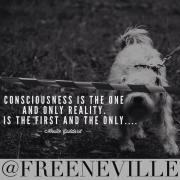 Is Consciousness The Only Reality?
