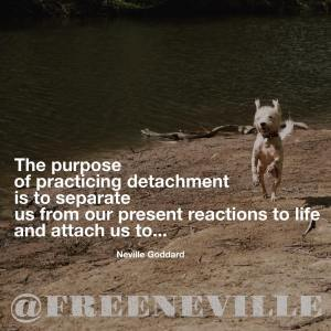 how_to_feel_it_real_detachment_nevile_goddard