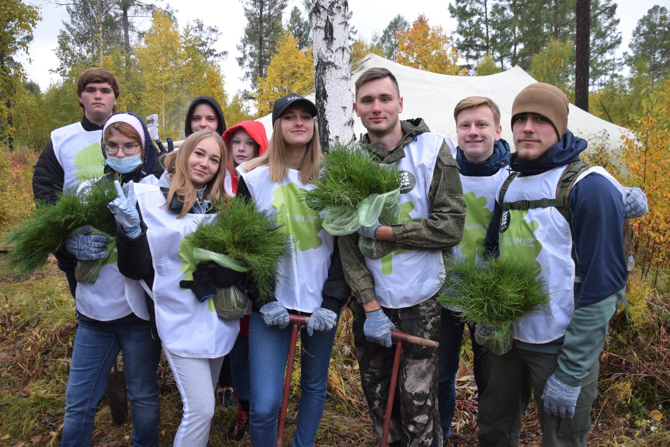 Братчане высадили деревья
