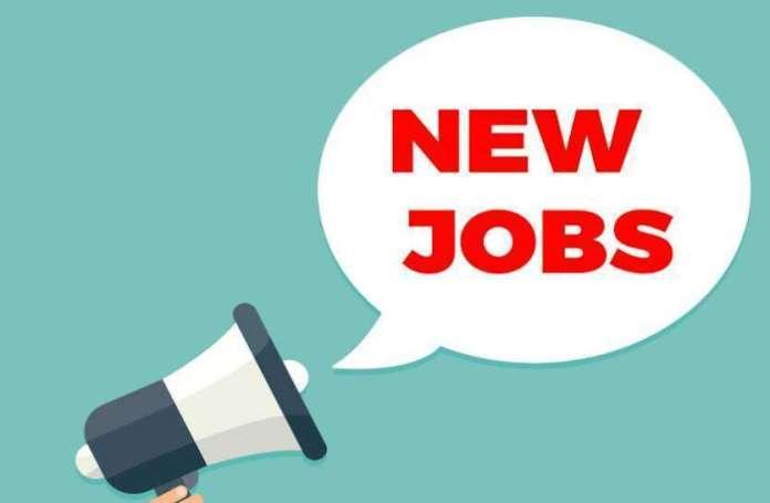 Delhi University Recruitment 2020: Sarkari Naukri 2020 के लिए जल्द करें आवेदन, 50 हजार मिलेगी सैलरी