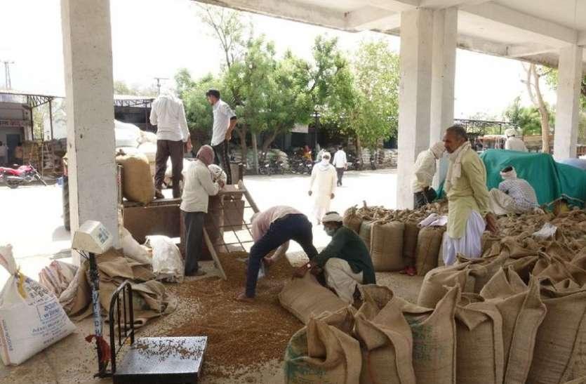 Strike In Agricultural Produce Markets, Turnover Of Crores Affected - कृषि उपज मण्डियों में हड़ताल, करोड़ों का कारोबार प्रभावित | Patrika News