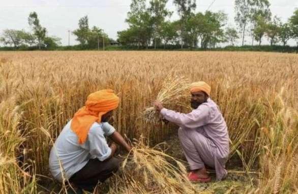 विधानसभा में गर्माया कर्ज माफी का मुद्दा, पूर्व कृषि मंत्री ने रखी मांग, दोबारा शुरु हो ऋणमाफी योजना