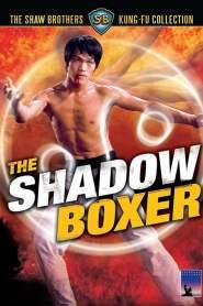 ผู้ยิ่งยงแห่งไทเก๊ก The Shadow Boxer (1974)
