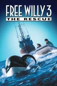 เพื่อเพื่อนด้วยหัวใจอันยิ่งใหญ่ 3 Free Willy 3: The Rescue (1997)