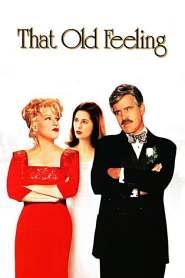 รักกลับทิศ ชีวิตอลเวง That Old Feeling (1997)
