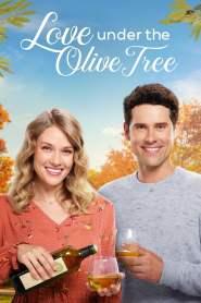 หัวใจบานฉ่ำใต้ต้นมะกอก Love Under the Olive Tree (2020)