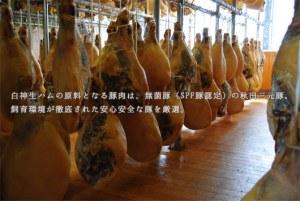 塩漬けした豚の後ろ足の部分の骨付き肉を長期間乾いた場所に吊るして造るハモンセラーノは、スペインの人々には欠かせない特別な食材で、日本でも人気が高まっています。