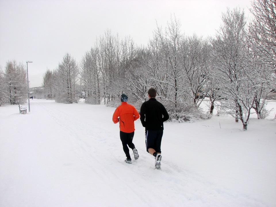 Tek v snegu