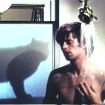 SCARDY CATS - EYEOF5A copy