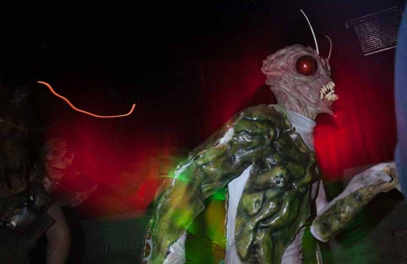 Los Angeles Haunted Hayride 2014 Review insect