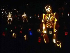 Rise of the Jack O'Lanterns 2014: Skeleton in Cemetery