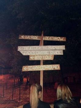 Which way to your doom? Photo copyright 2015 by Yuki Tanaka.