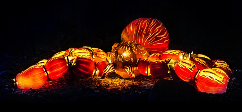 Rise of the Jack O'Lanterns big-spider