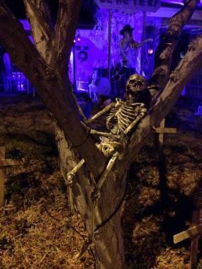 coffinwood-cemetery-2016-skeleton-in-tree