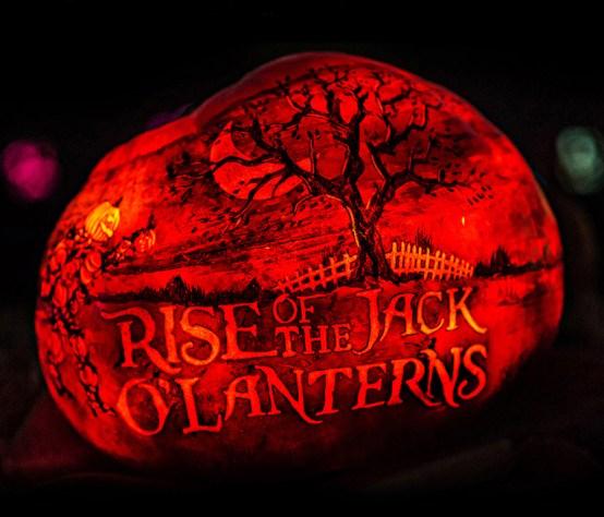 rise_logo_art_pumpkin
