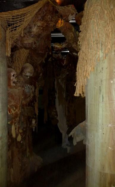 Skulls in the Asylum