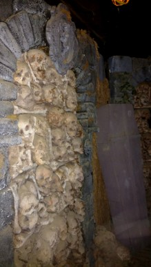 Coffin Creek Asylum 2016skulls-on-wall-asylum