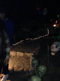 garden-path-of-doom-skulls-near-path