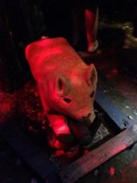 rotten-apple-2016-pig