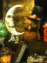 Moon and Owl window display