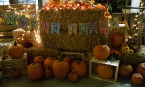 Haunted Little Tokyo 2017 Tanaka Farms Pumpkin Patch 2