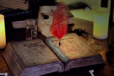 Casa Creepy Haunted House book